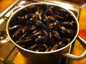 casserole mussels
