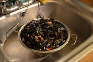 washed mussels